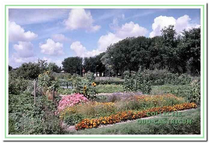 Vanaf 1964 zijn de tuinen aan de Breedeweg in gebruik.