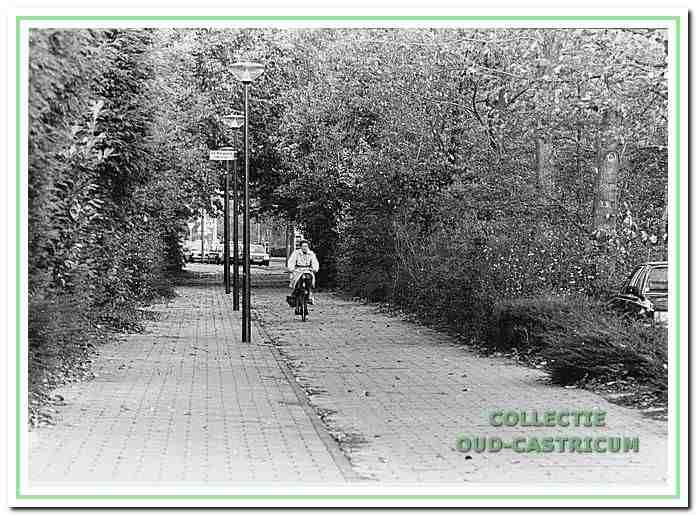 Het fietspad langs de Dokter de Jonghweg in Castricum.