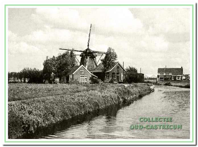 afb. 10 Het hart van de waterhuishouding van de Castricummerpolder: de molenaarswoning, het hoofdgemaal en de molen 'De Dog'.