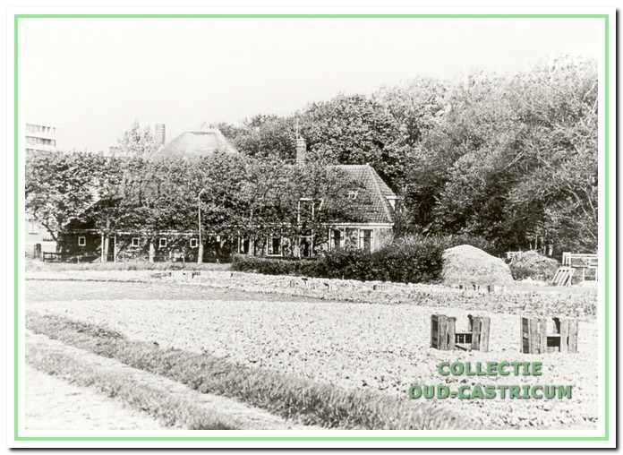 Cornelis Spaansen wordt in het jaar 1897 herkozen als raadslid. Hij was op 22 dec. 1863 geboren in Schoorl, kwam in 1889 in de Oosterbuurt in Castricum wonen en was sinds 1891 tol zijn overlijden in 1925 gemeenteraadslid mei een korte onderbreking van vier jaar. Cornelis woonde op deze bijzonder fraaie boerderij, die nu (in 1998) nog steeds de Breedeweg siert. Zijn zoon Cornelis P. Spaansen neemt in 1920 her boerenbedrijf over; hij komt in 1931 in de gemeenteraad en overlijdt in 1976.
