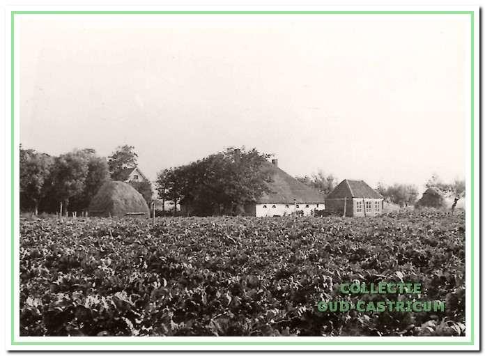 De boerderij van Dorus Kaandorp (nr 75). gezien vanuit het zuiden. Nog juist is een punt van het dak te zien van de boerderij van Jan Schermer.