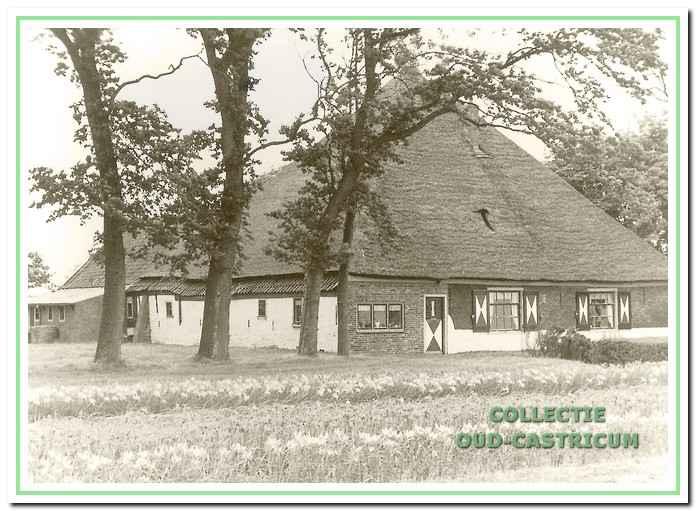 De boerderij van Arie Liefting aan de Limmerweg (zie 19).
