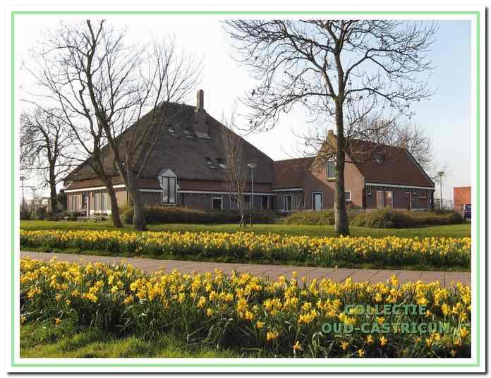 De boerderij Alberts hoeve van Albert Asjes aan de Molendijk in Castricum.