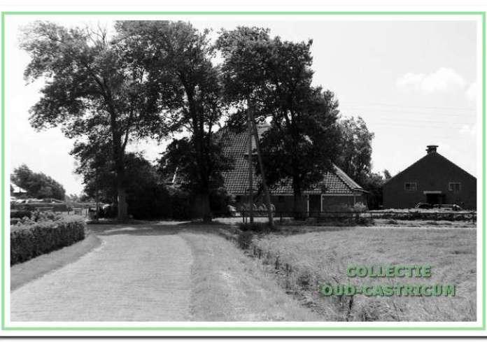 Beeld van de Dorpsstraat in oorlogstijd (1942). Achrer het publiek rondom de ijscoman is het distributiekantoor zichtbaar.