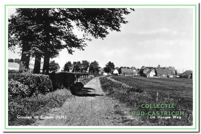 Deze foto van de Haagsche weg werd genomen vanaf de duinkant in de richting van de huizen aan de Heereweg.