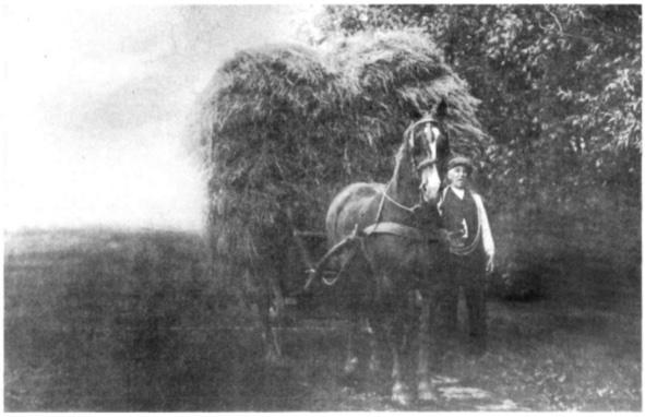 foto Albert Asjes + paard en wagen