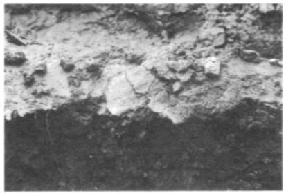 Enkele gevonden brokstukken in situ.