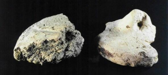 Fragmenten van potdeksels. Het linker fragment is afkomstig uit de afvalkuil van de Rietkamp, het rechter exemplaar is in de jaren zestig gevonden in de omgeving van de Cieweg.