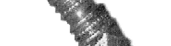 Kopfragment van een gouden haarpin uit ca. 400 na Chr.