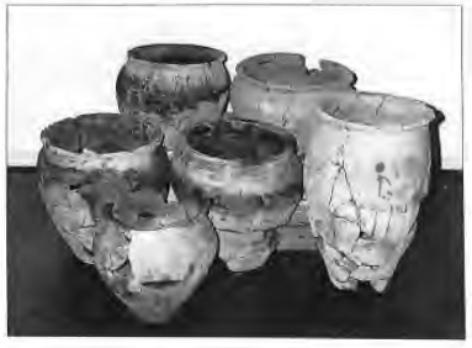 De schervenhoop bleek na restauratie uit zes min of meer complete potten te bestaan en een hoeveelheid potfragmenten.