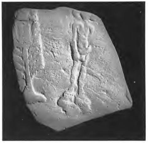 Scherf van Romeins terra sigillata aardewerk, gevonden aan de Deurganck.