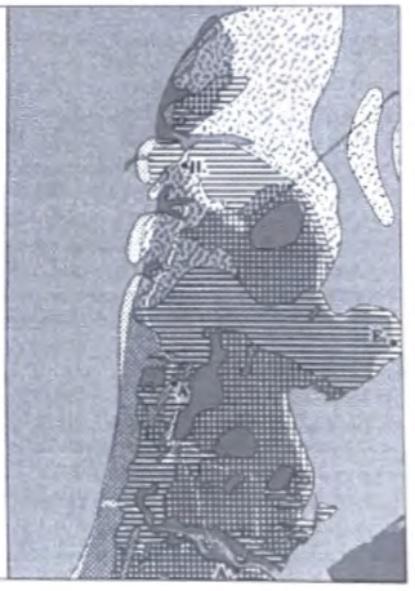 Rond 1100 na Chr. is er van de vooruitgeschoven en forse kustboog van Noordelijk Noord-Holland weinig meer overgebleven. Tot op de dag van vandaag zet de kusterosie zich nog voort. (Zagwijn 1986)
