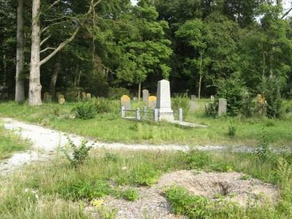 Wegens iepziekte zijn op de begraafplaats bomen gekapt, waaronder de zo beeldbepalende treuriep in de rotonde van het padenstelsel. Wat er van overgebleven is, is een gapend gat en veel onkruid. (foto Ernst Mooij)