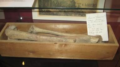Koperen Knoop mysterie op basisscholen in Castricum