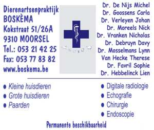 logo_boskema