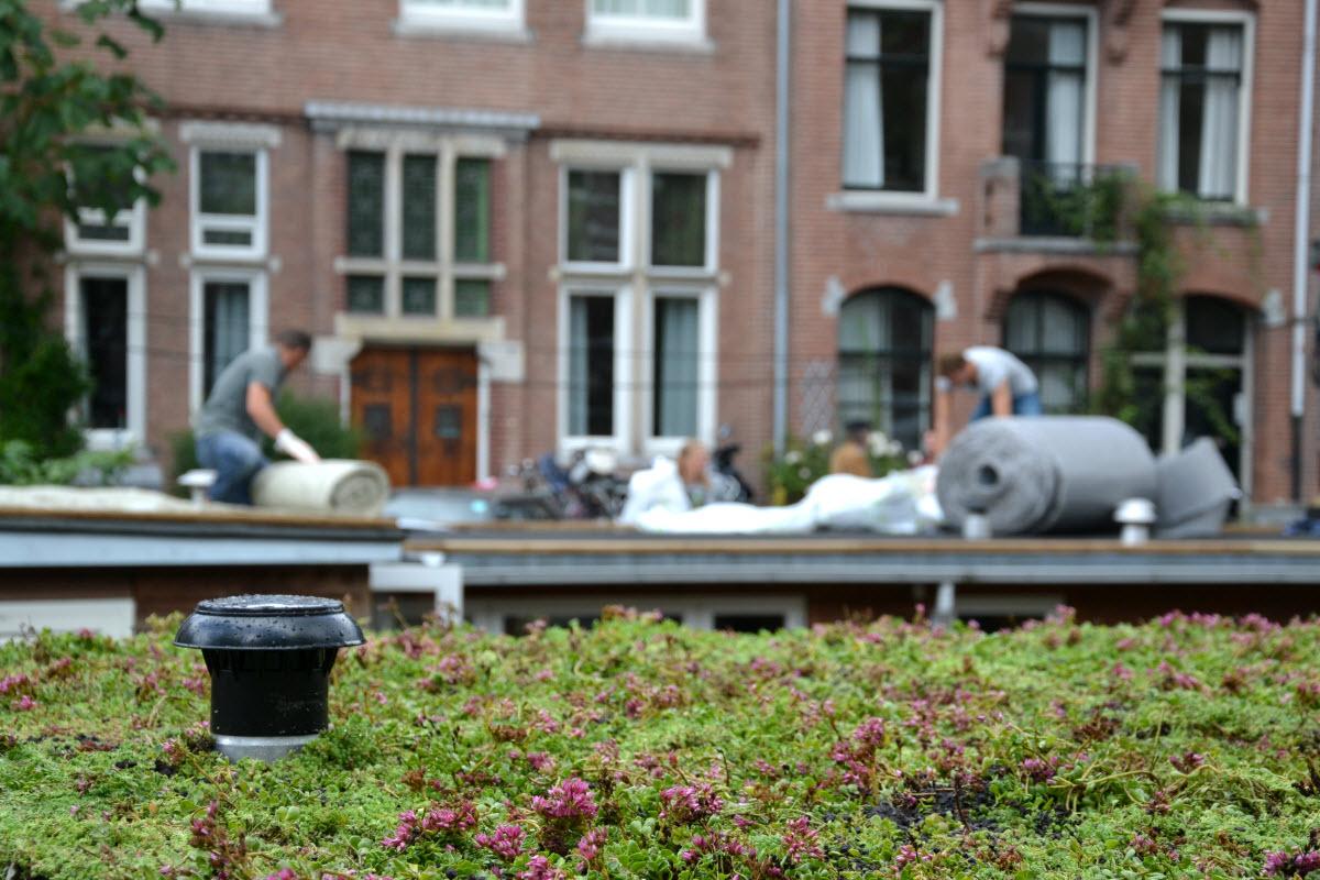 1.000 m2 groen woonbootdak erbij in Amsterdam Centrum