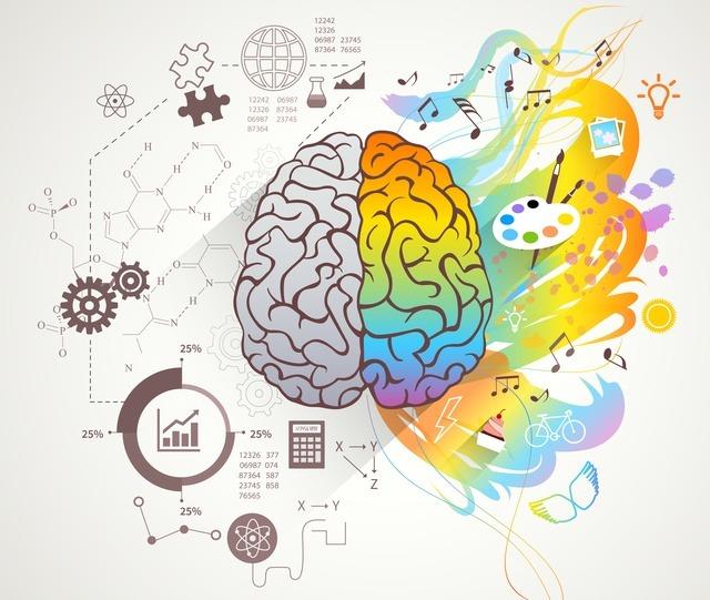 hemispheres-cerveau-mieux-jouer-en-public