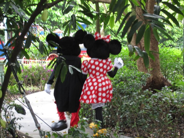 Mickey & Minnie Mouse, ahh love!!