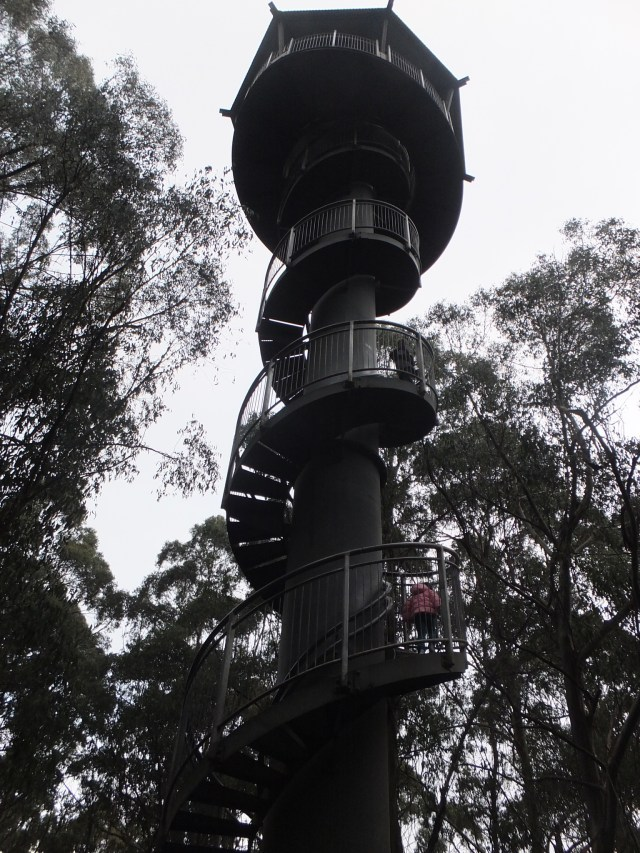Otway Fly Tower