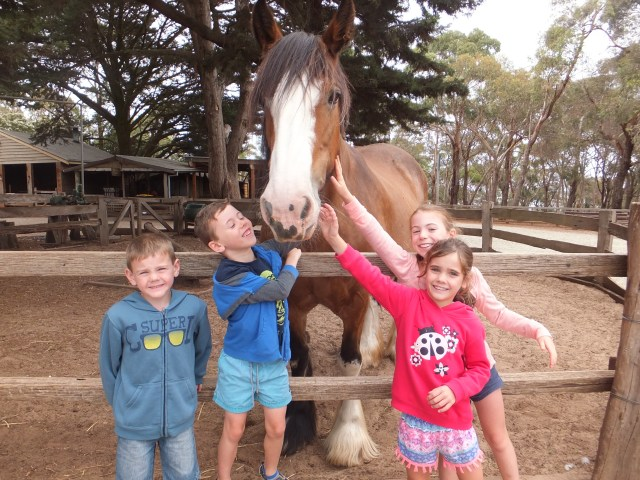 things to do in Phillip Island with kids