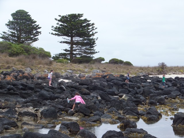 things to do in Port Fairy