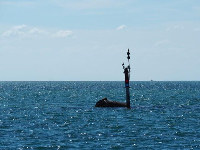 Searoad Ferries
