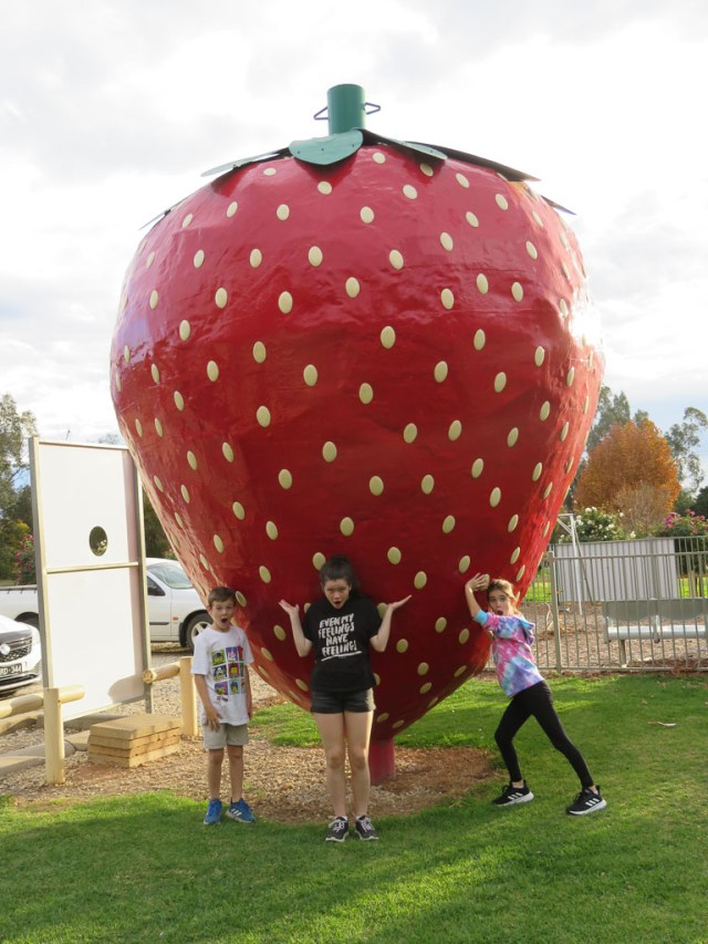 top things to do in Cobram