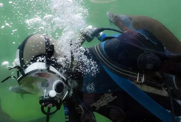 Choosing a scuba regulator