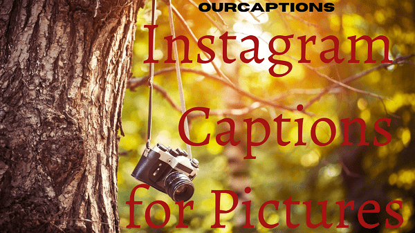 Captions for pictures