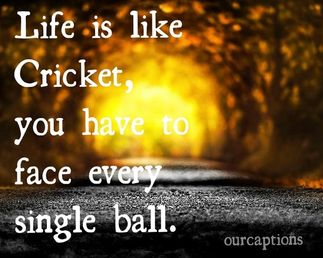 Life is like cricket, you have to face every single ball.