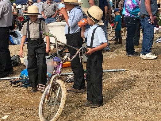 Ohio Part 3: Amish Auction in Danville Oh & Put-In-Bay, Oh