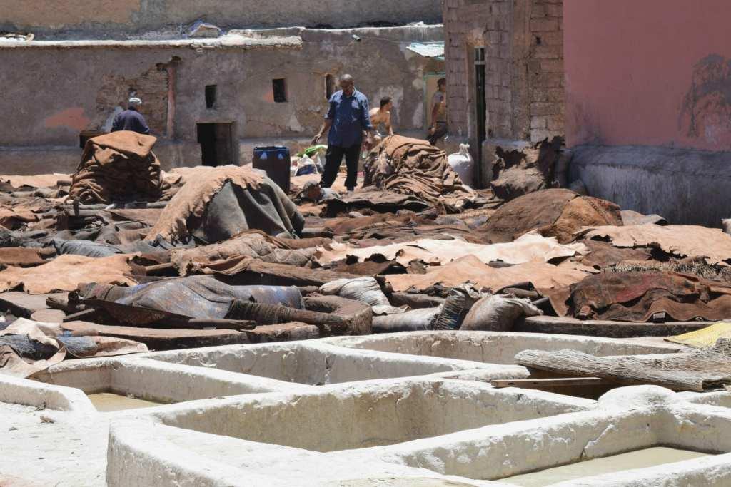 Marrakech Tannery Scam