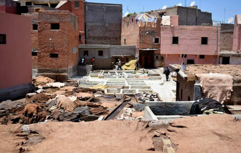 Marrakech Tannery Scam: Overview with Hides