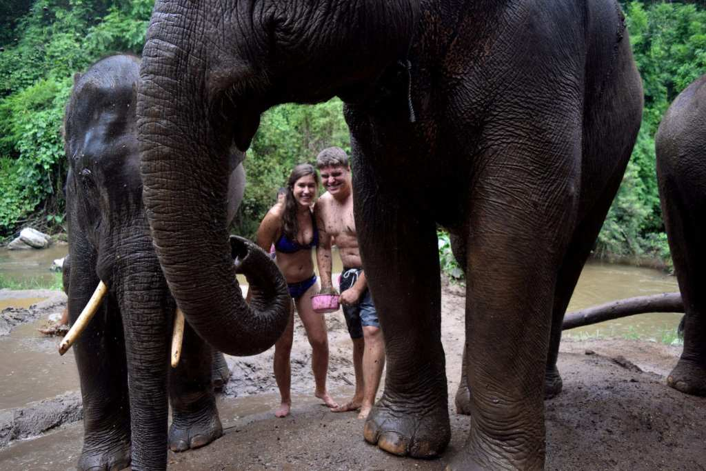 How to Ethically Visit Elephants in Thailand