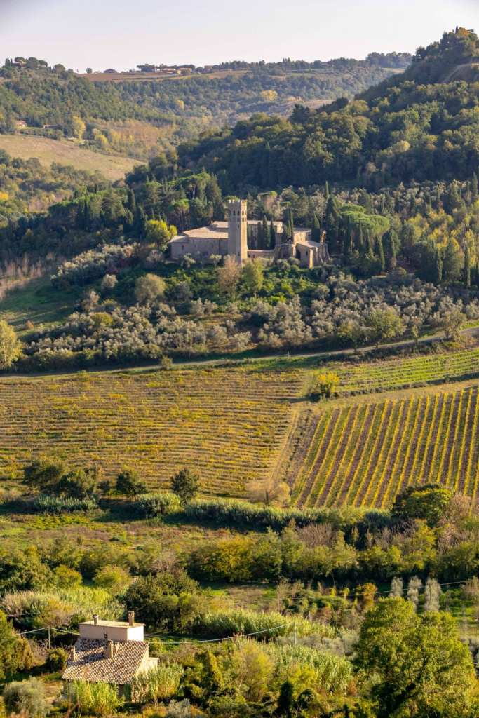 Rolling countryside near Orvieto in Umbria, with a vineyard in front and a castle in the background.