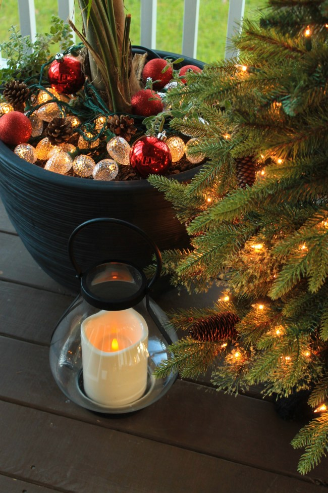 christmas lights in planters