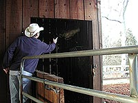 Bill in the barn