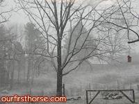 snowy-pasture.jpg