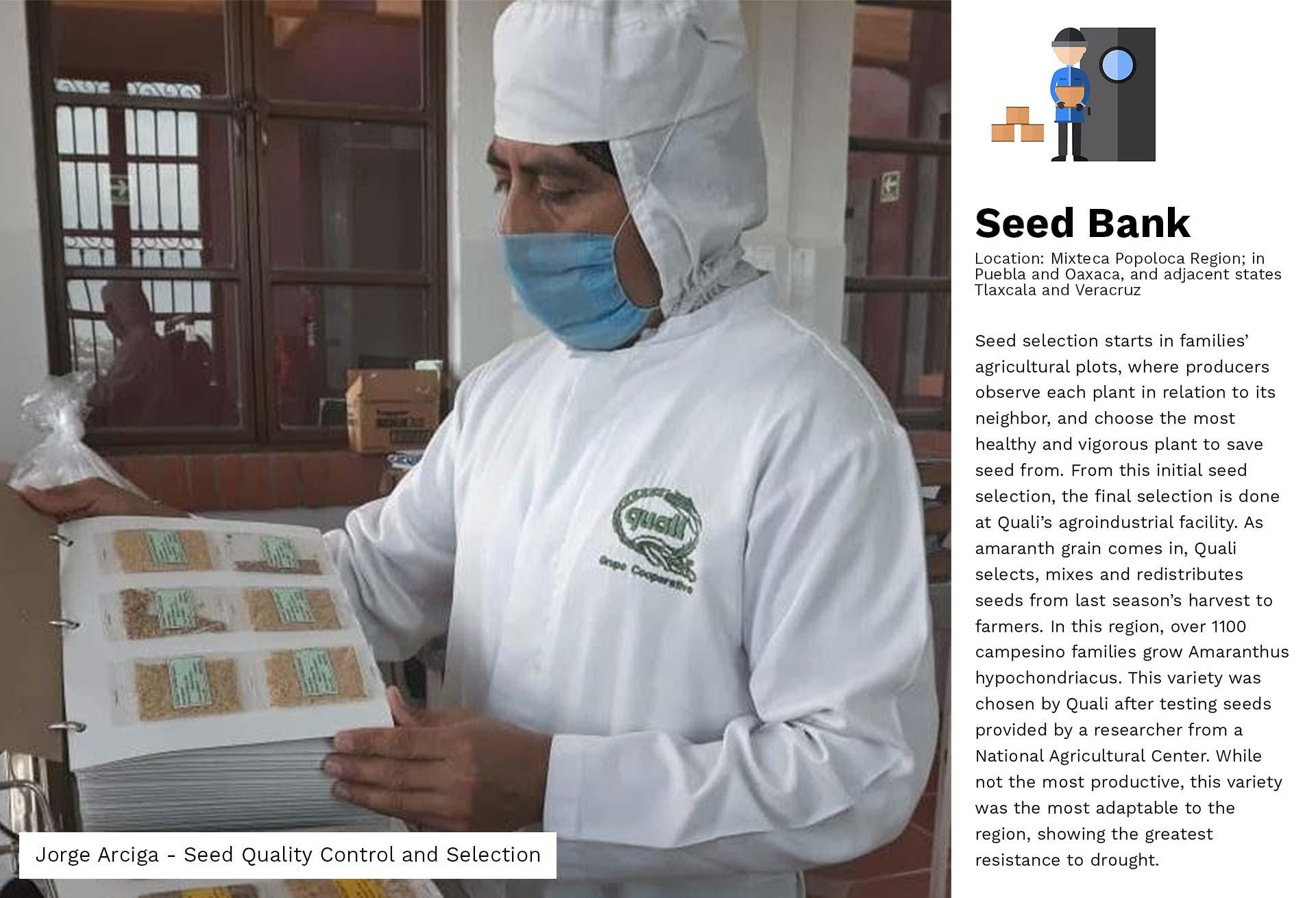 01a-Seed Source