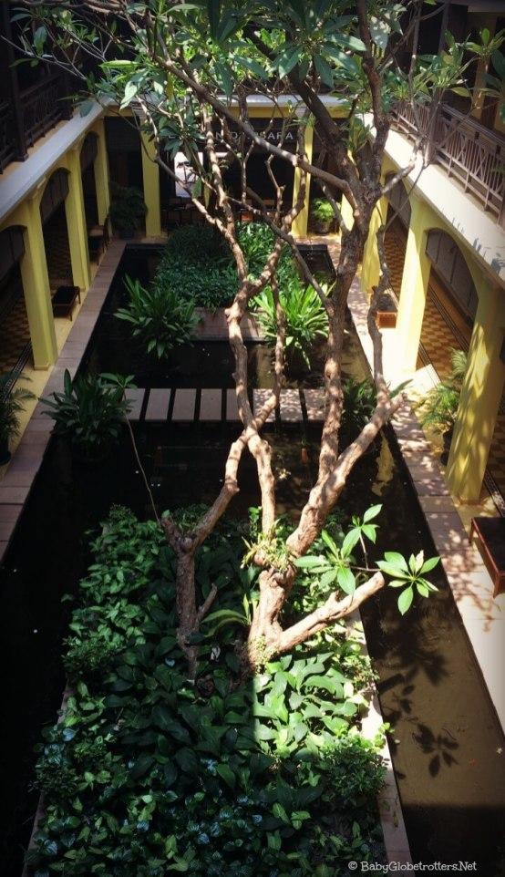 Atrium garden between the rooms