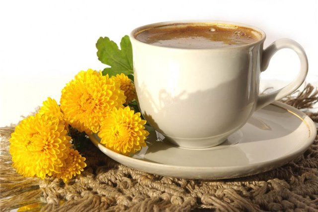 Image result for Dandelion coffee
