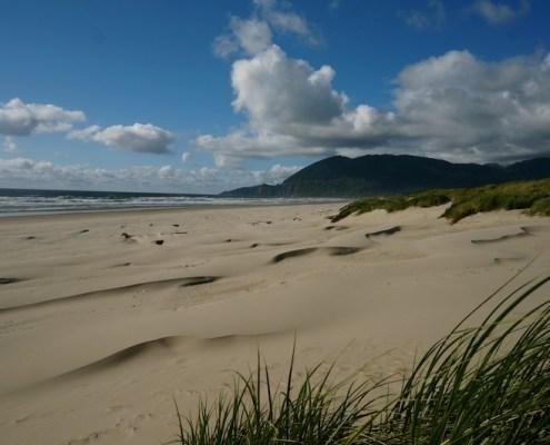 nehalem bay beach