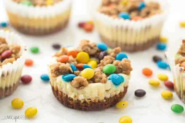 Gluten-Free-Monster-Cookie-Cheesecakes