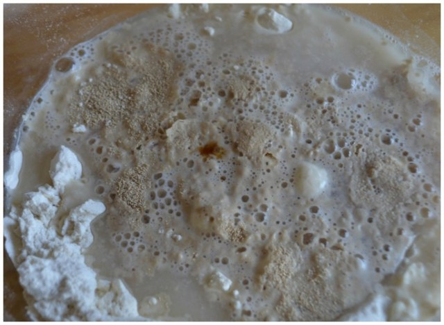 herb bread yeast and water #shop