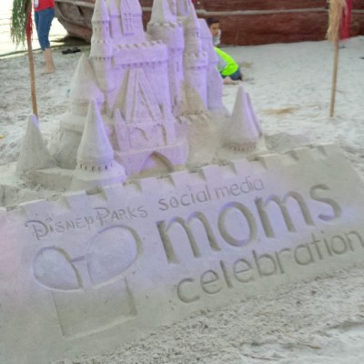 Disney Social Media Moms – The Celebration