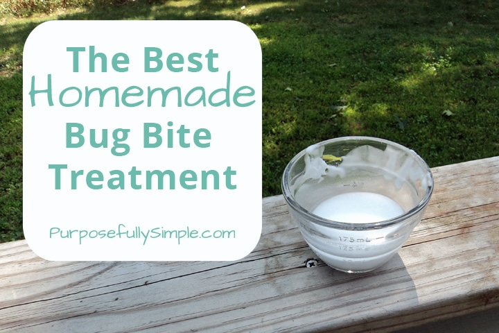 Want to know the best homemade bug bite treatment? Find out what has worked for me (and it's made from things you likely have at home already).