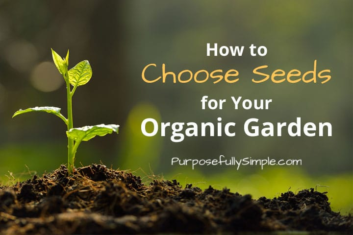 Learn how to buy seeds - the right seeds - for your garden. Learn the difference between all of the labels and choose the right seeds for you.