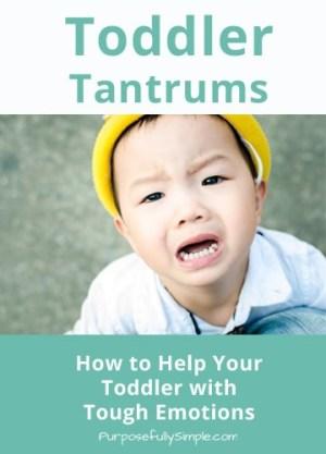 Toddler Tantrums - Purposefully Simple