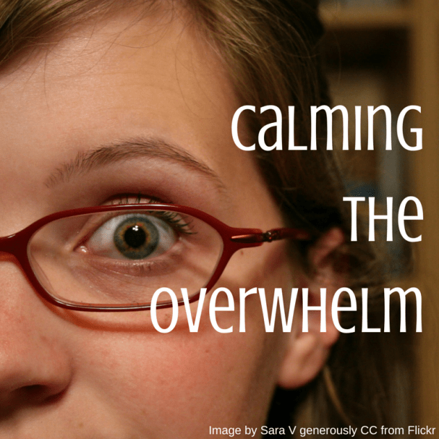 Calming the Overwhelm