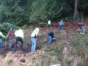 students building a trail in the woods